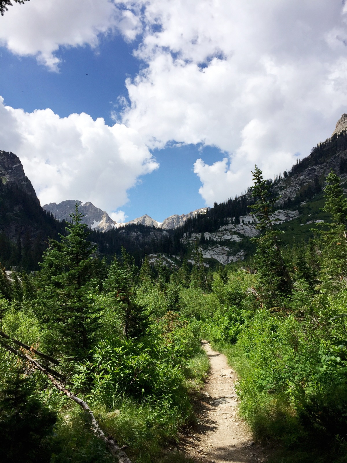 Spend a day hiking into beautiful Paintbrush Canyon in Grand Teton National Park. The views along the way are stunning, you won't be disappointed!
