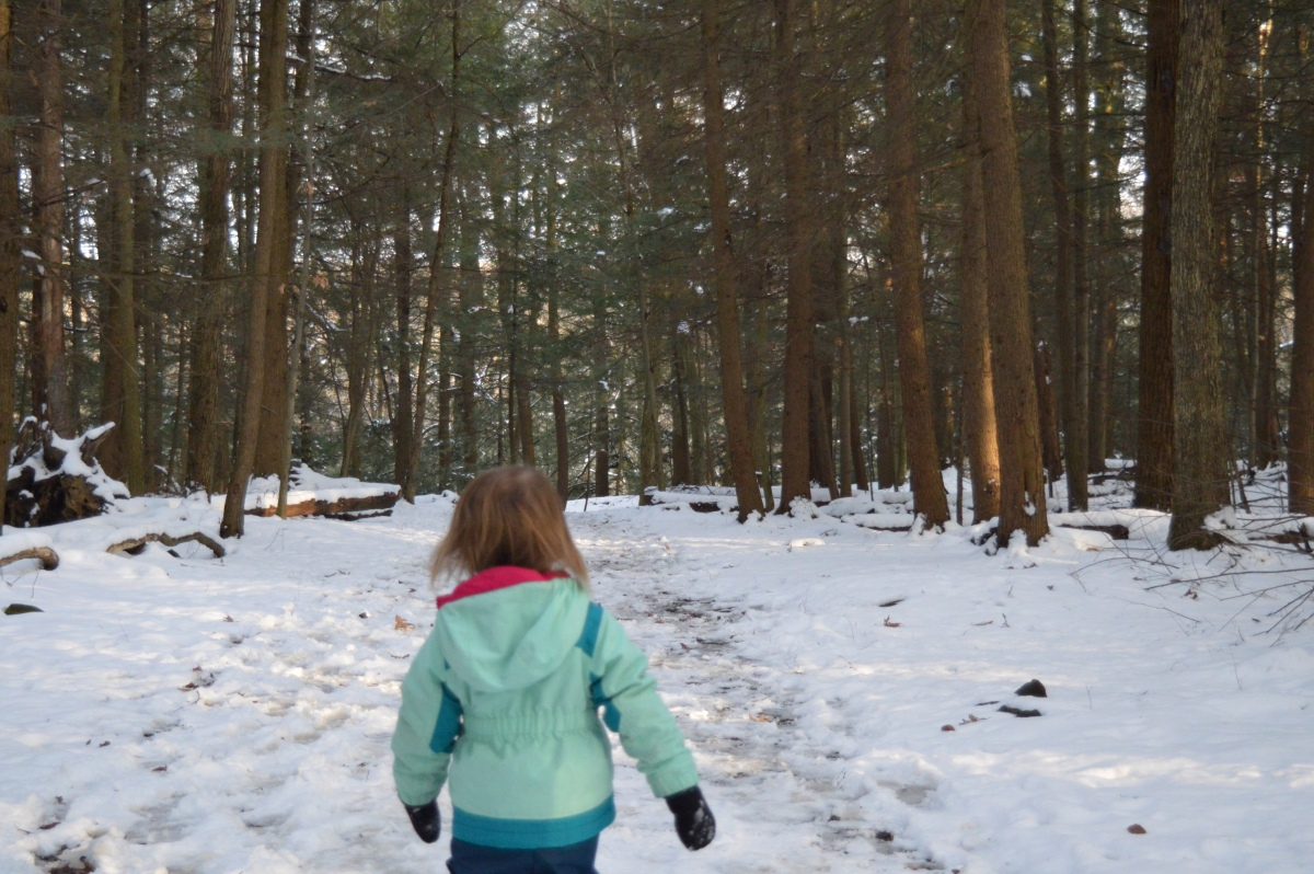 Abby in the woods, Cuyahoga Valley National Park
